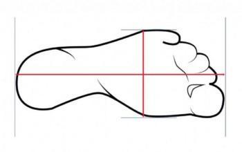 Cách đo size giày nam chuẩn 100 - 3