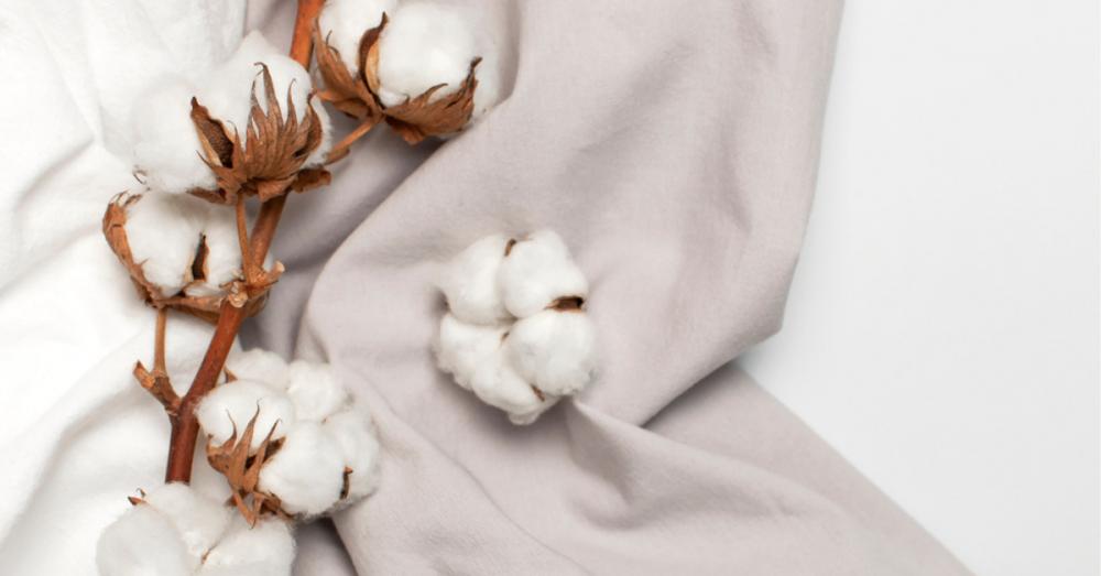 Cotton 100 - chất liệu đi cùng thời trang xanh - 1